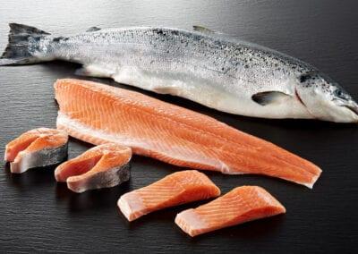 salmon-hero